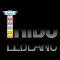 logo-tribu-leblanc-web-couleurs